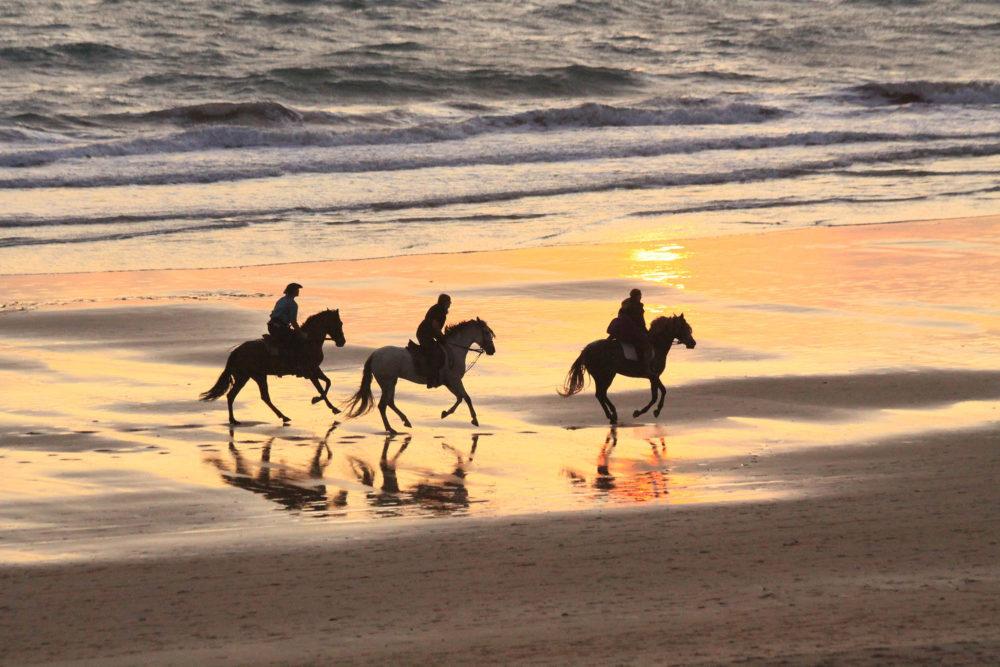 Partir en vacances avec son cheval