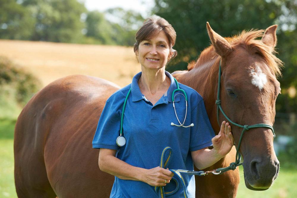 Soins vétérinaires obligatoires