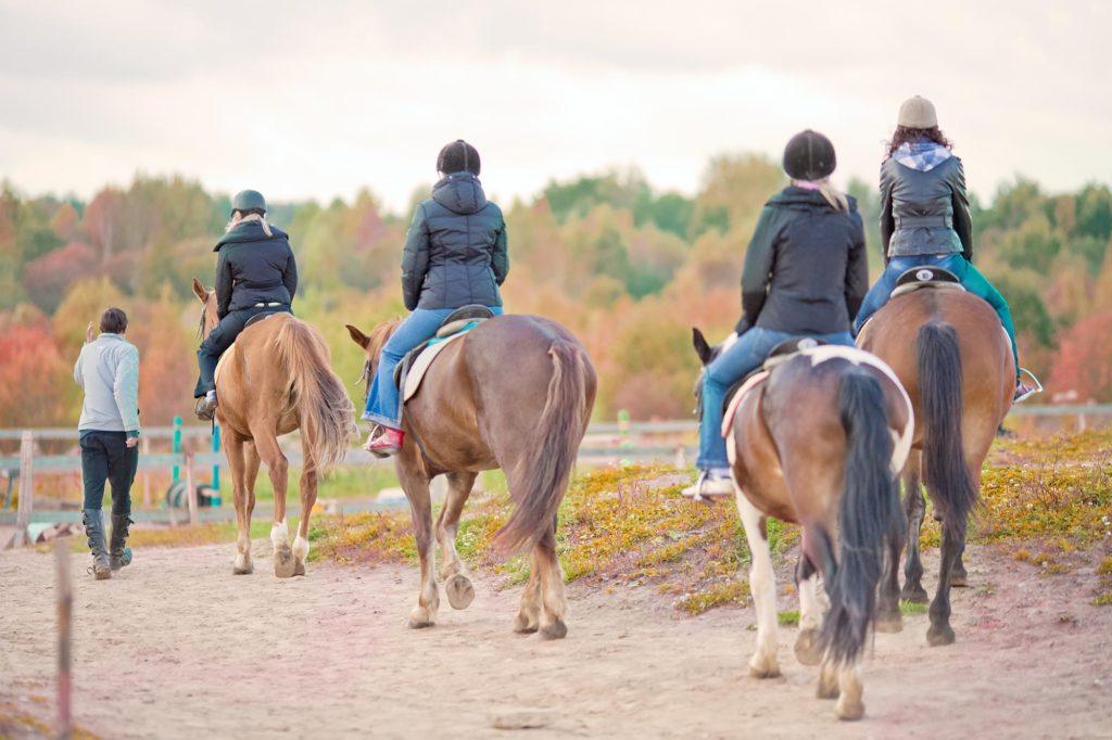 Assurance de tous les cavaliers des centres équestres